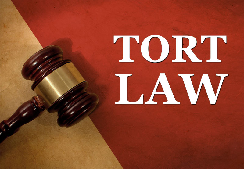 different types of torts: intentional, negligence and strict liability