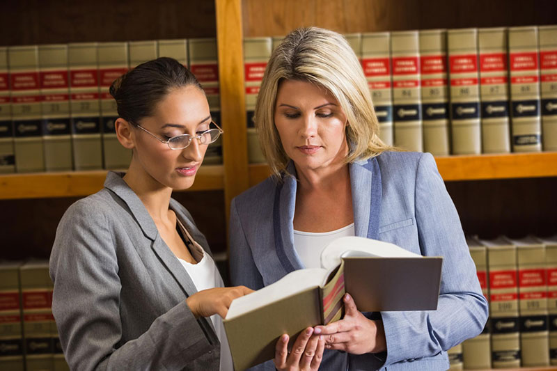 Law Clerk vs Paralegal